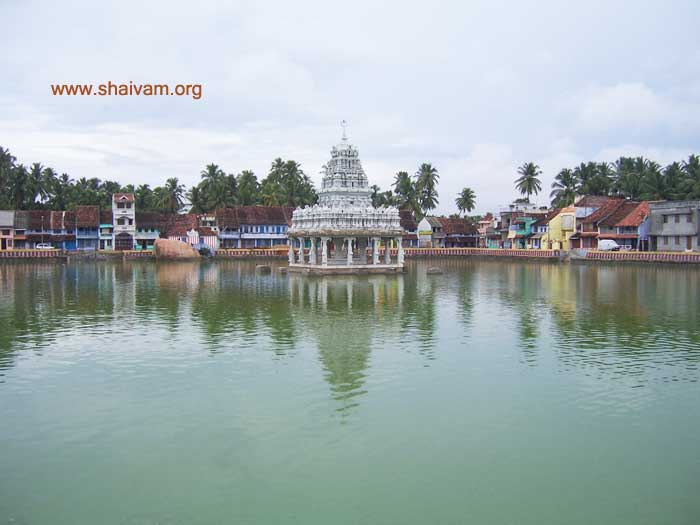 Sri Thaanumaalayan temple pond