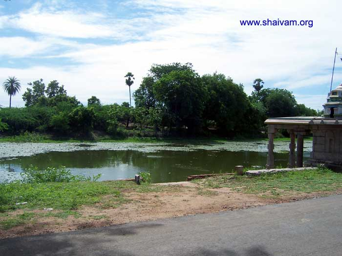 The holy pond of Sri Satchinathar temple, Avalivanallur.